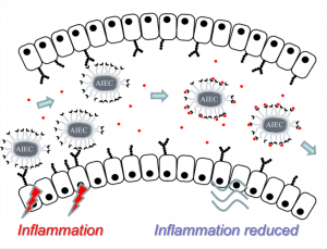 Anti-infective Sugars against pathogenic bacteria 02