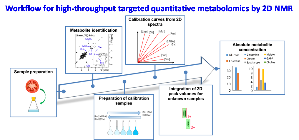 Workflow for high-throughput targeted quantitative metabolomics by fast 2D NMR