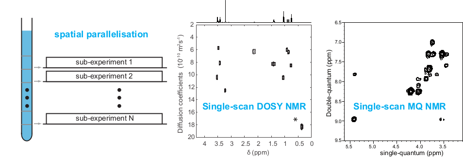 MIMM NMR 6 Spatial encoding in high-resolution NMR