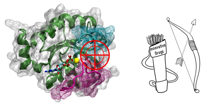 Inhibition of Rho protein (SYMBIOSE - CEISAM)