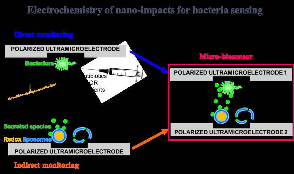 IMF - Electrochemistry nano impacts bacteria sensing