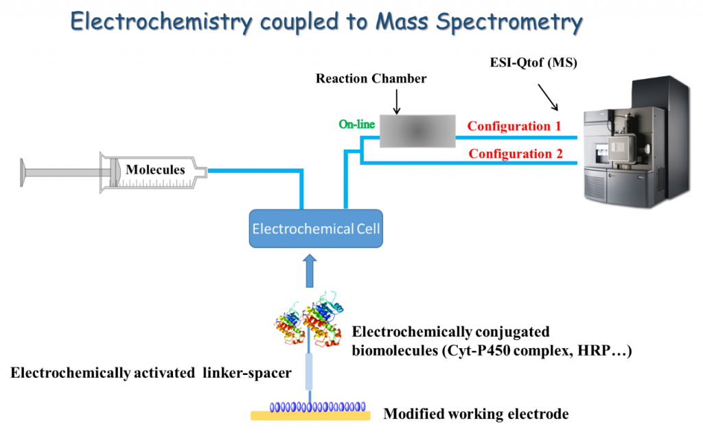 IMF - Electrochemistry to mass spectrometry