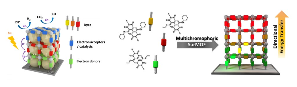 Schematic representation of multicomponent MOFs
