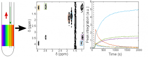 SUMMIT ERC - Online reaction monitoring by single-scan 2D NMR under flow conditions