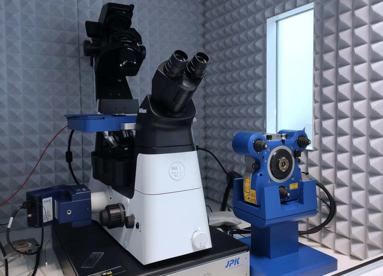 Microscope à Force Atomique CEISAM 01 (Web)